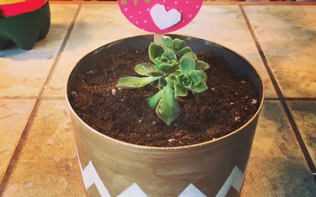 DIY: Tin can planter